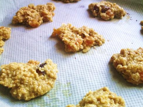 Uncooked Biscuits