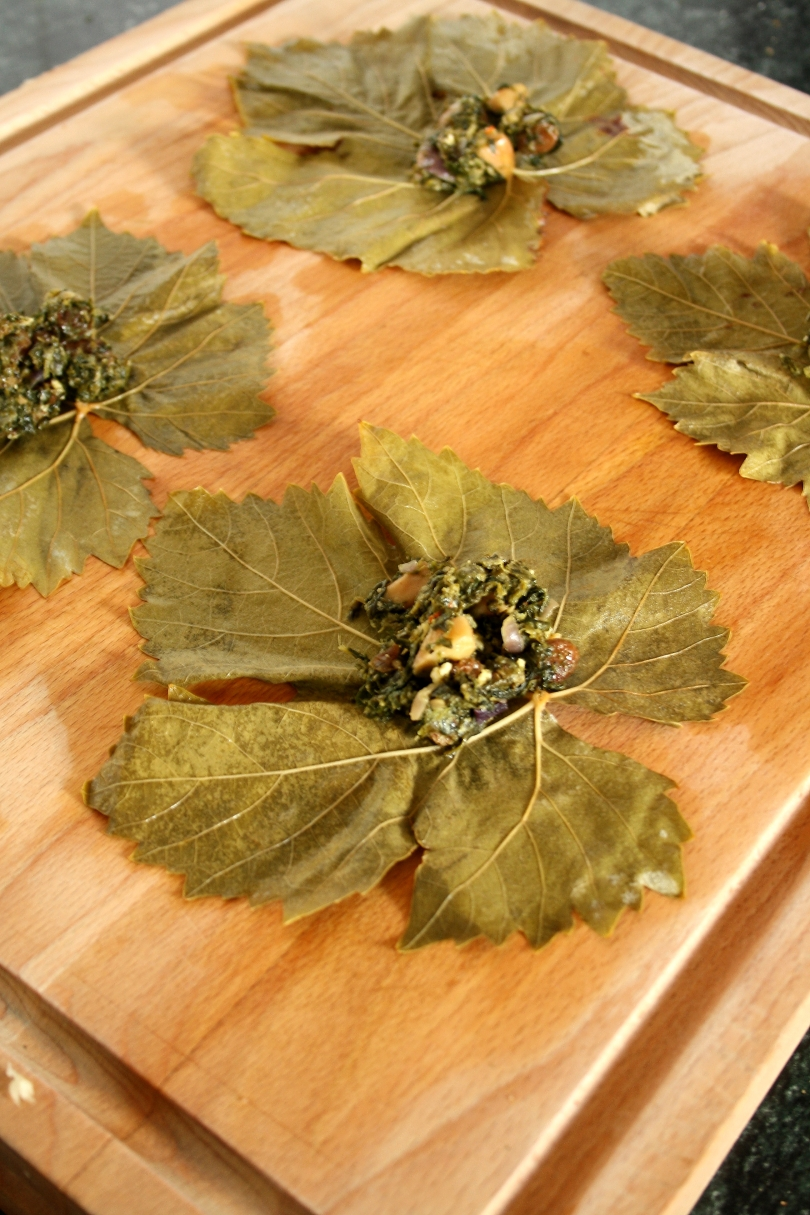 Vine Leaves & Stuffing