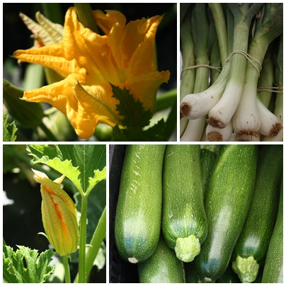 Courgettes & Flowers